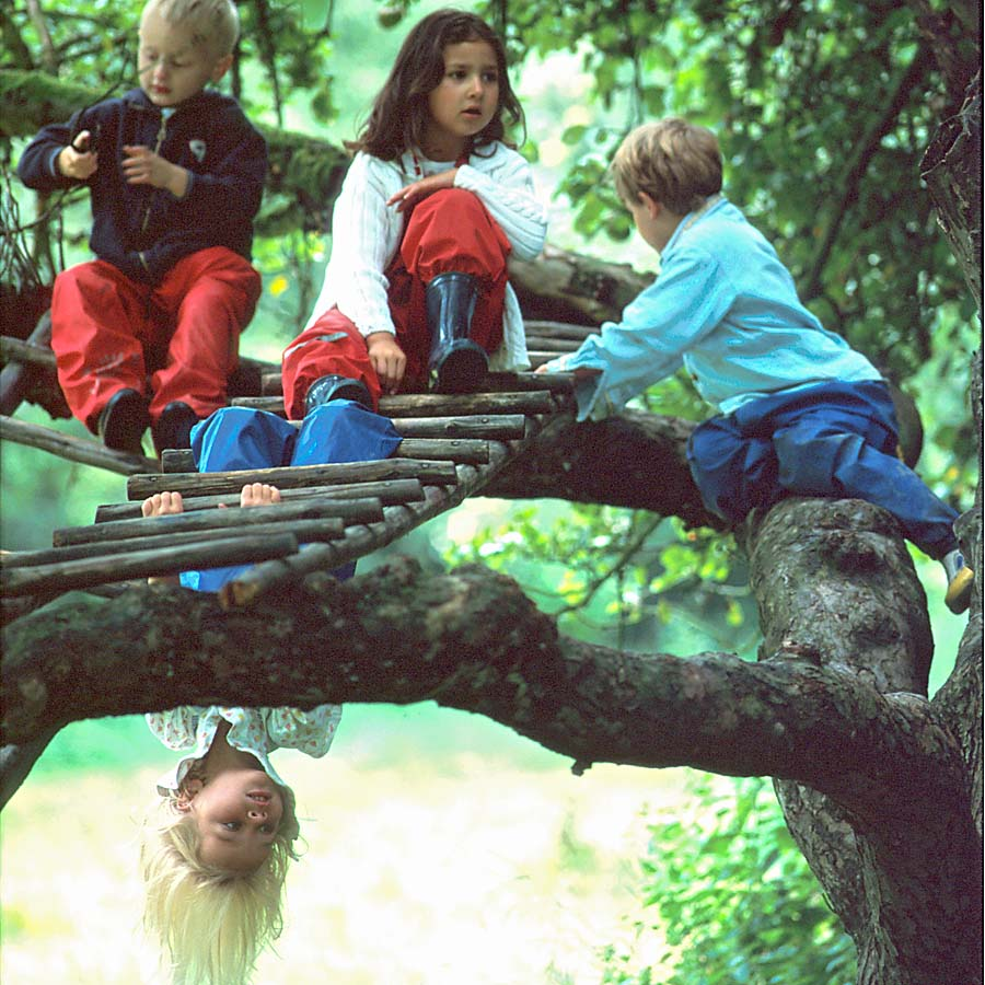 Kinder im Apfelbaum (Foto: Dominic Menzler, dmkommunikation.de)