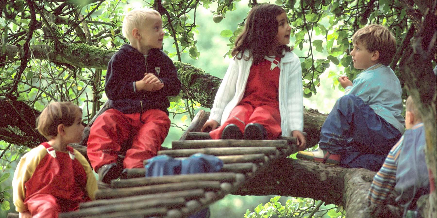 Kinder eines Waldkindergartens spielen im Apfelbaum (Foto: Dominic Menzler, dmkommunikation.de)