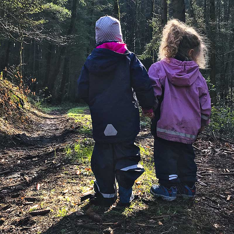 Kinder erleben Wald