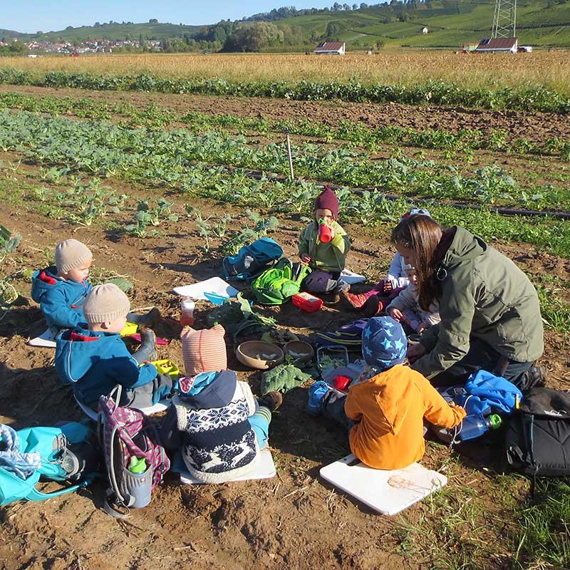 Picknick auf dem Feld mit den Gartenkindern, Hofkindergarten von Kita NATURA in Binzen