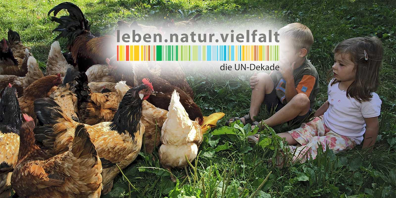 Die Kita Natura eG erhält Auszeichnung von der UN-Dekade für biologische Vielfalt 2020